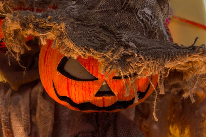 Scary pumpkin jack scarecrow. Halloween decoration