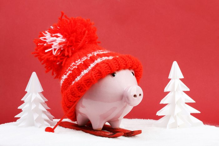 Piggy box with red hat with pompom standing on red ski and ski sticks on snow and around are snowbound trees on red background