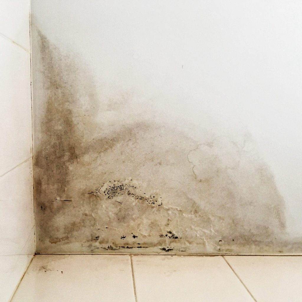 Rain water leaks on the ceiling causing damage, peeling paint and moldy.