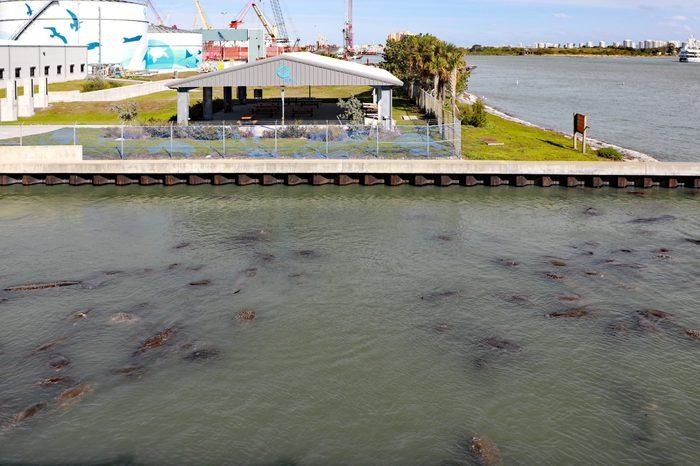 WEST PALM BEACH, FLORIDA/USA