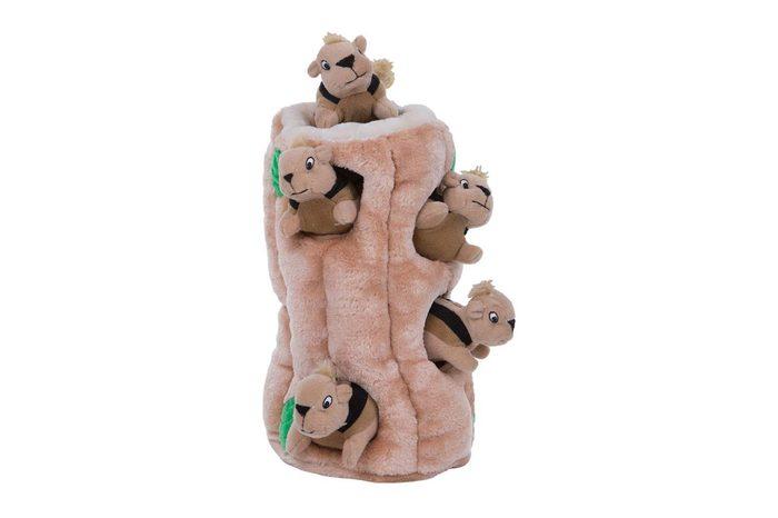 squirrel dog toy