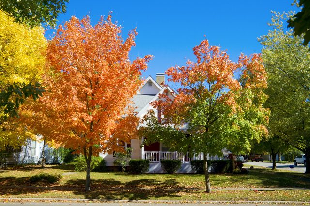 Fall scene in a small town