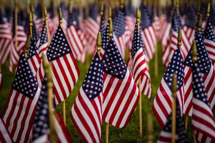 Phalanx of U.S. Flags honoring the fallen