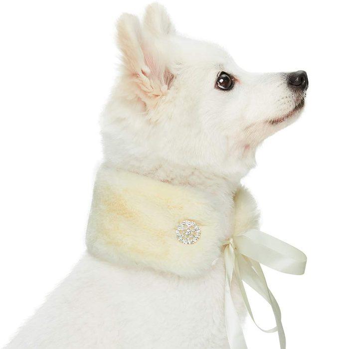 faux fur collar dog