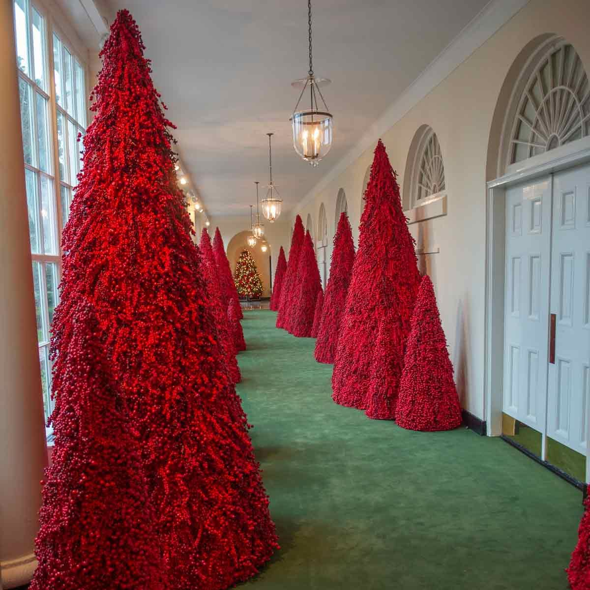 2018-White-House-Christmas-Tree