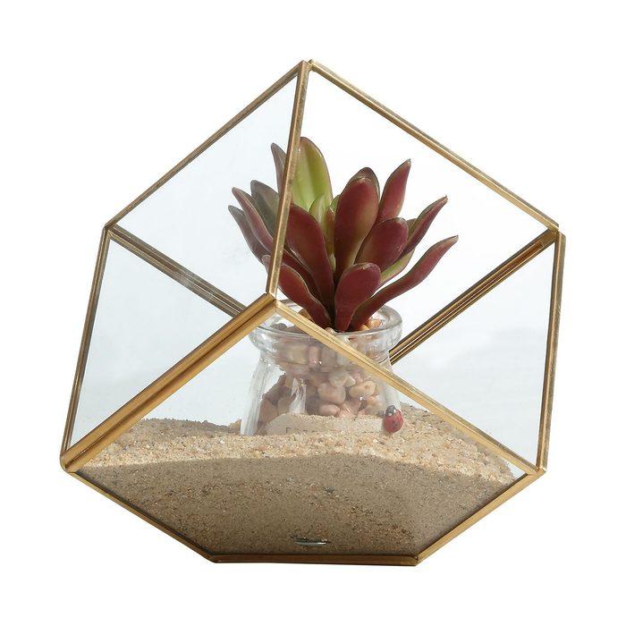 Danya B. Glass Terrarium