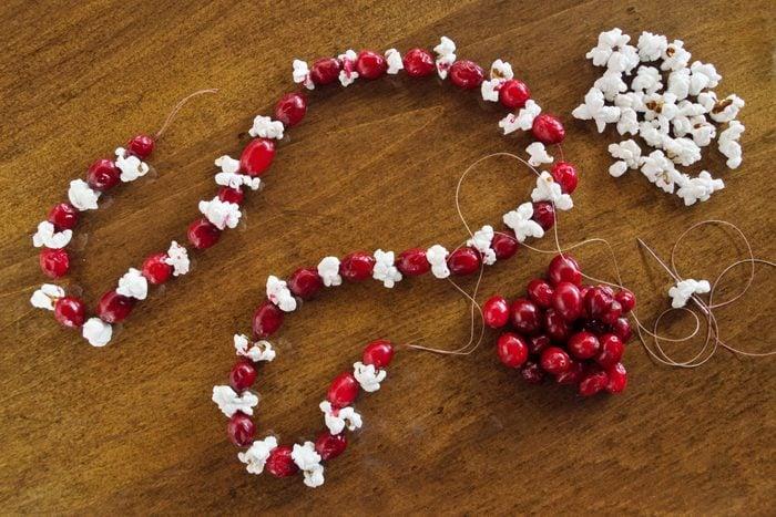 Cranberry And Popcorn Garland