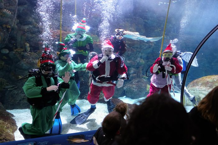 santa and elves scuba diving at the omaha henry doorly zoo and aquarium in omaha nebraska