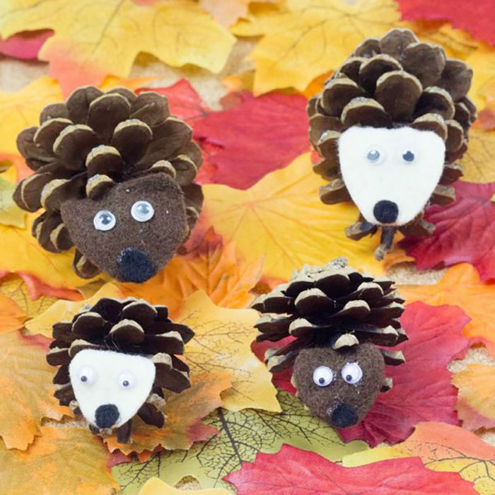 Pinecone Hedgehog for thanksgiving