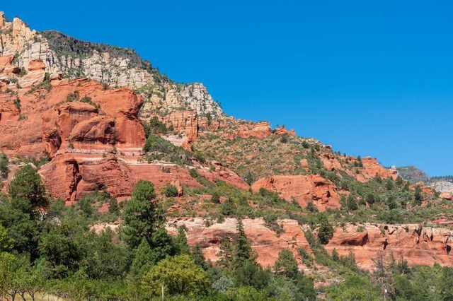 Slide Rock State Park low angle landscape of trees and red rock formations on a hillside