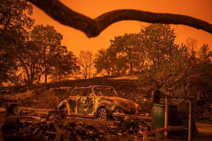 volkswagen beetle burned by california wildfire