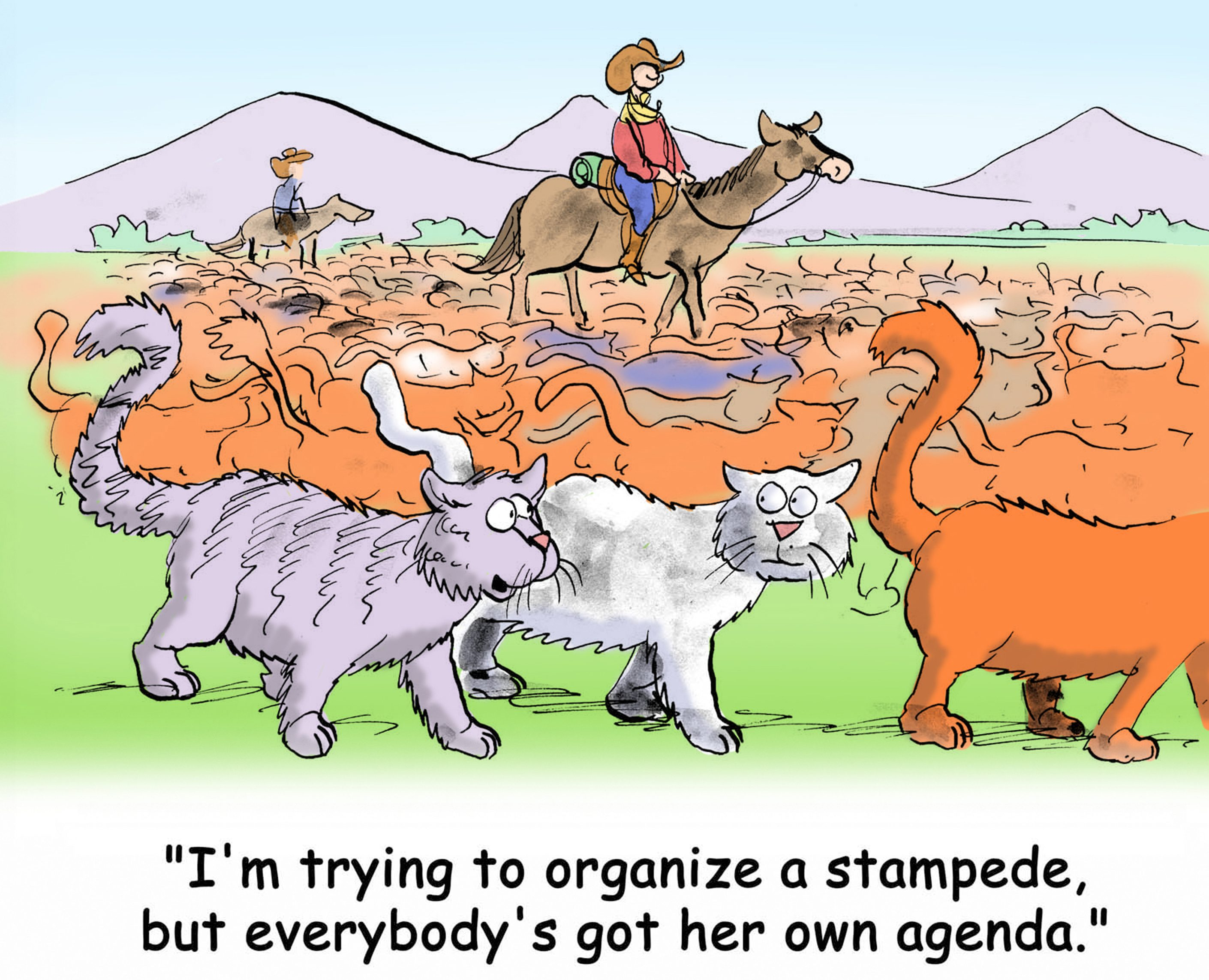 """""""I'm trying to organize a stampede but everybody's got her own agenda."""""""