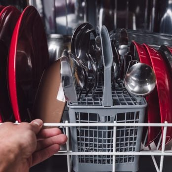 Do You Have a Moldy Dishwasher? Here's How to Tell and How to Fix It