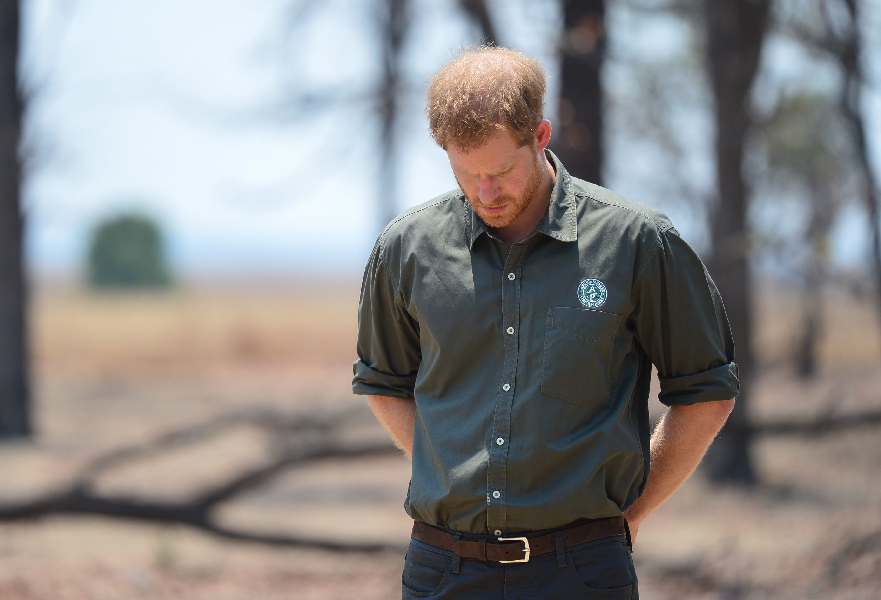 Mandatory Credit: Photo by Dominic Lipinski/Shutterstock (10430652l) Prince Harry pays tribute at the memorial site for Guardsman Mathew Talbot of the Coldstream Guards at the Liwonde National Park in Malawi, on day eight of the royal tour of Africa. PA Photo. Picture date: Monday September 30, 2019. Guardsman Talbot lost his life in May 2019 on a joint anti-poaching patrol with local park rangers. Prince Harry visit to Africa - 30 Sep 2019