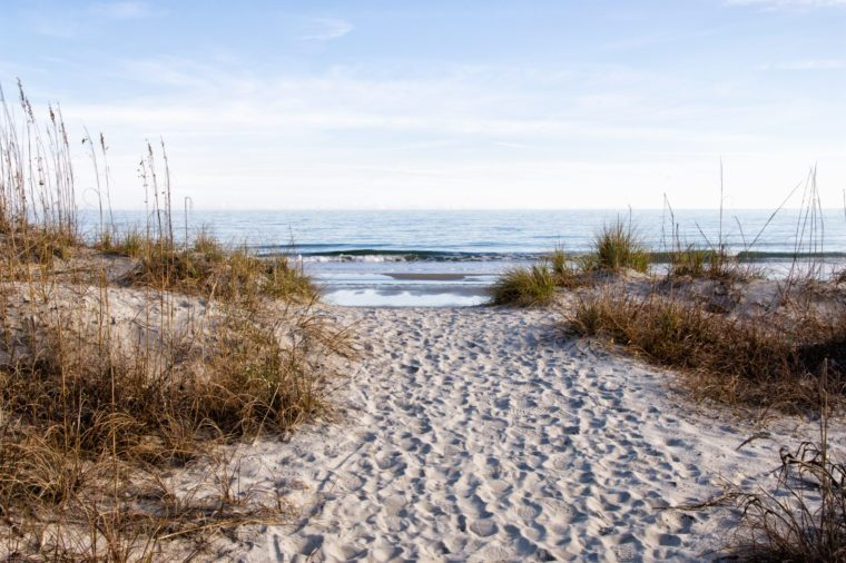 A much traveled sandy footpath leading to the Atlantic Ocean at Huntington Beach State Park in South Carolina during the winter months.