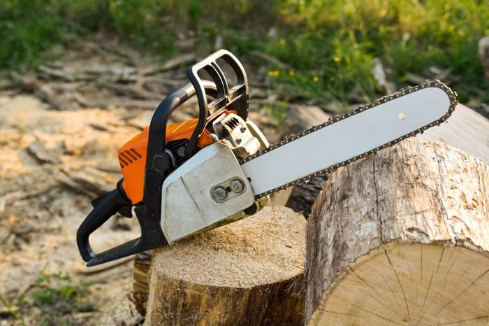 Chainsaw that stands on a heap of firewood in the yard on a beautiful background of green grass and forest.