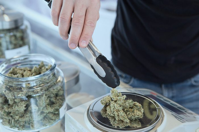 Detail of cannabis buds on glass jar over dispensary counter - medical marijuana dispensary. Budtender Guiding . Cannabis Flowers.