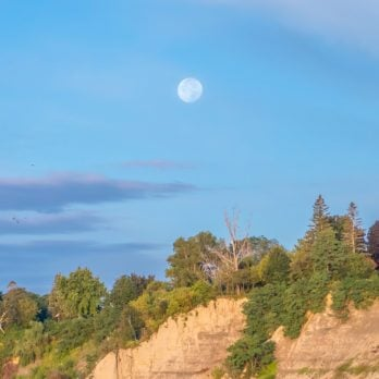 Here's Why You Can Sometimes See the Moon During the Day