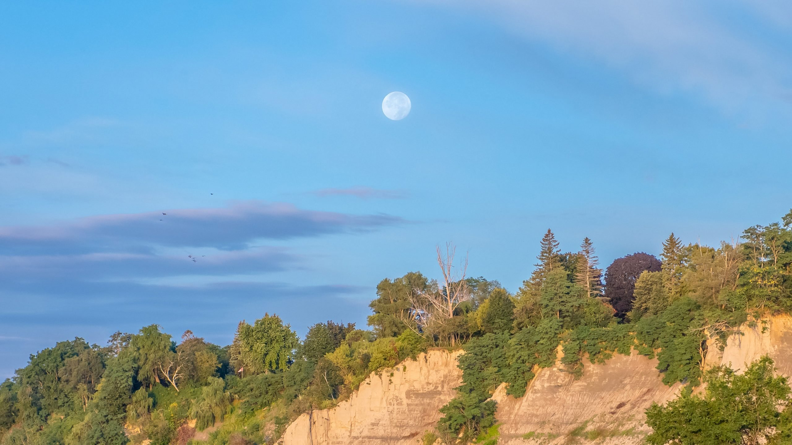 The sand cliffs, beach, green trees and vegetation of the Scarborough Bluffs escarpment on lake Ontario in Toronto, on a sunny summer fall autumn day, with clouds and bright moon in the blue sky.