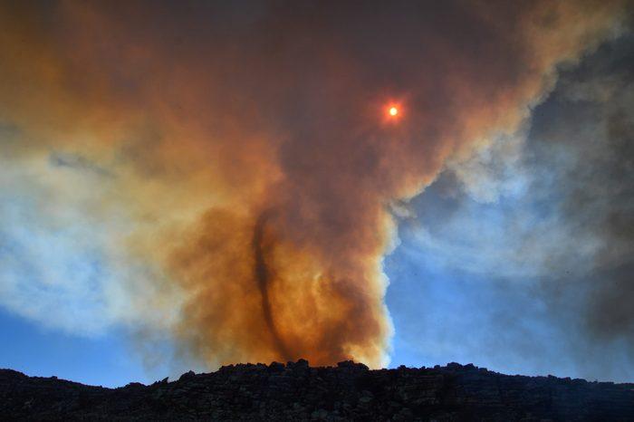 A fire vortex swirls the smoke clouds over a fynbos wildfire