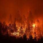 13 Things You Didn't Know About Wildfires