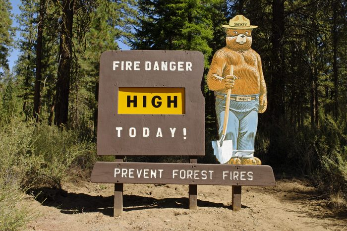 smokey bear wildfire prevention sign