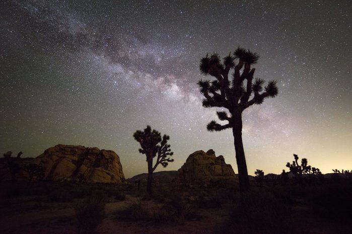 Milky Way Galaxy at night in Joshua Tree National Park, California