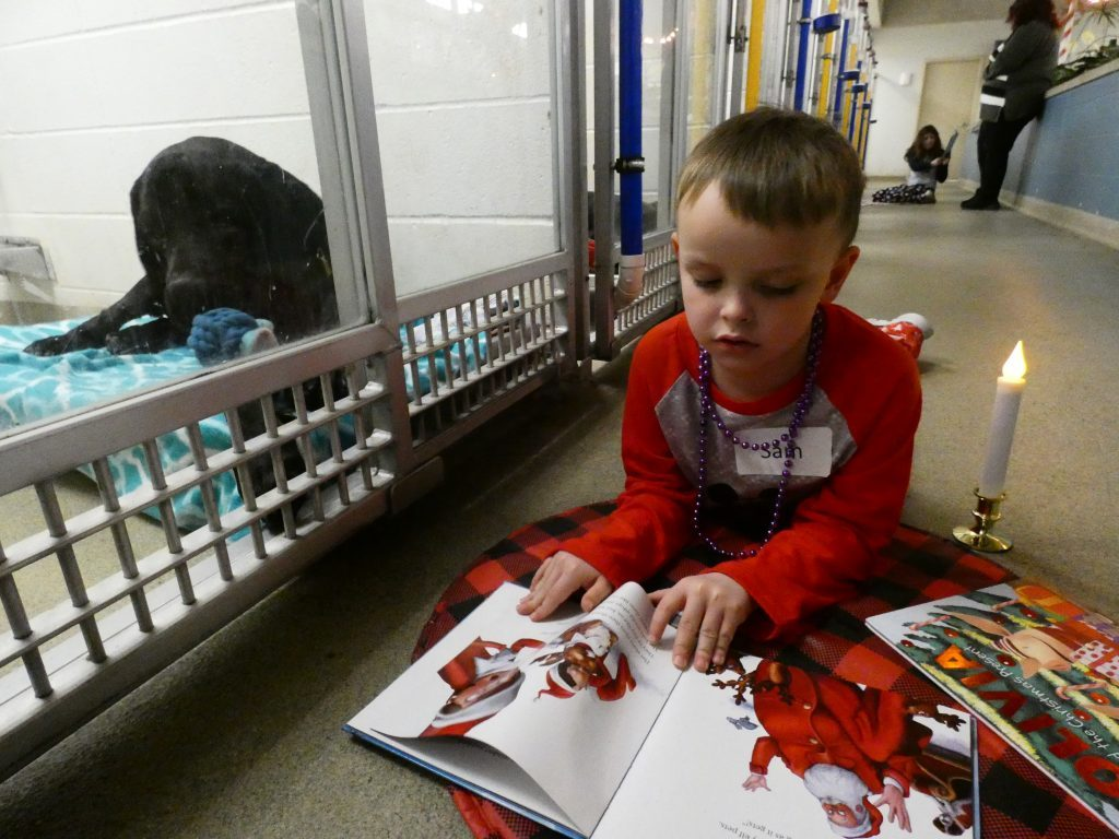 missouri humane society heartwarming acts of kindness