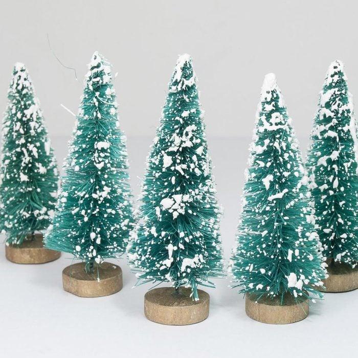 Bottlebrush trees