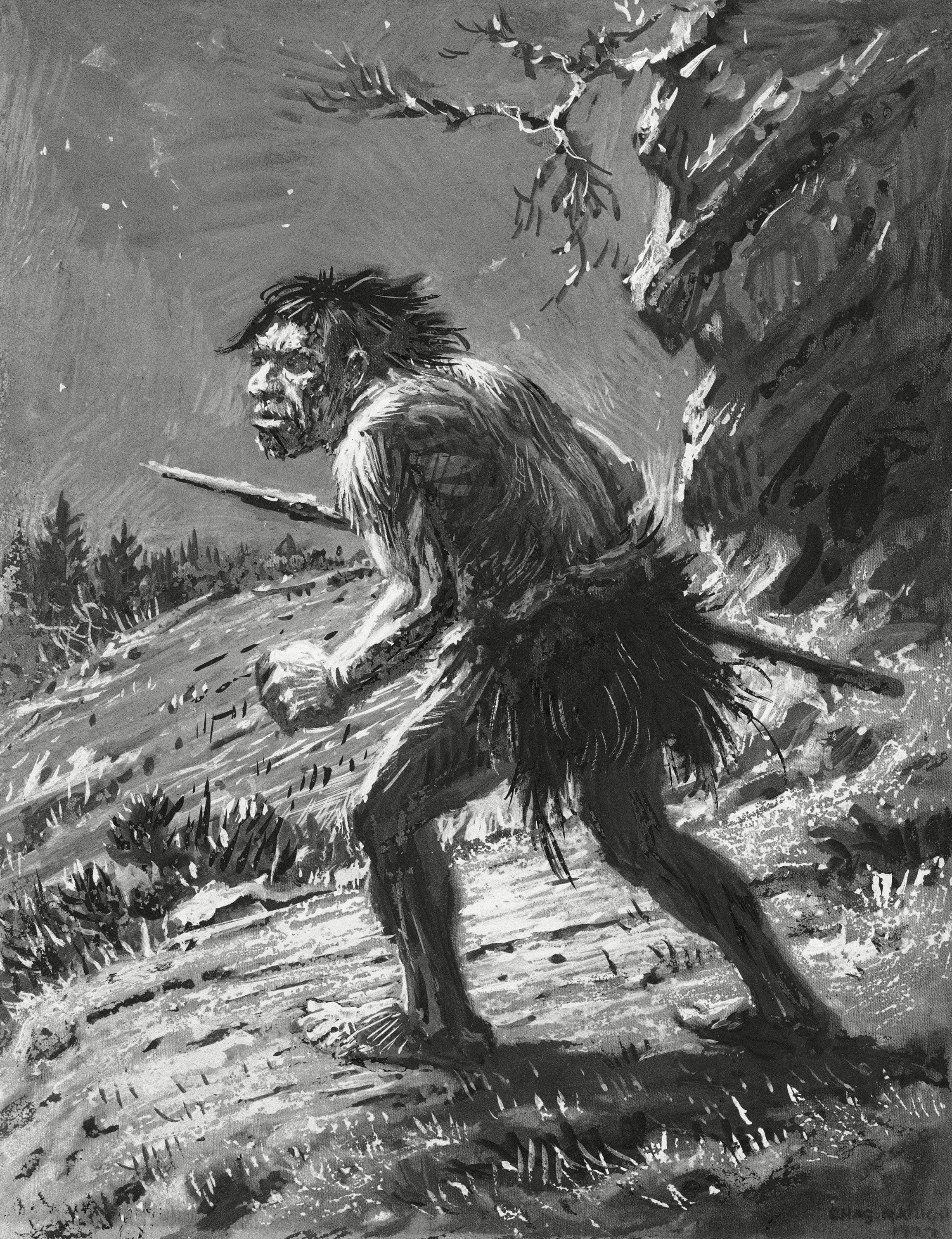 Mandatory Credit: Photo by AP/Shutterstock (7406802a) Artwork of a Neanderthal armed with a weapon. Prehistoric man was a skilled hunter Prehistoric Man