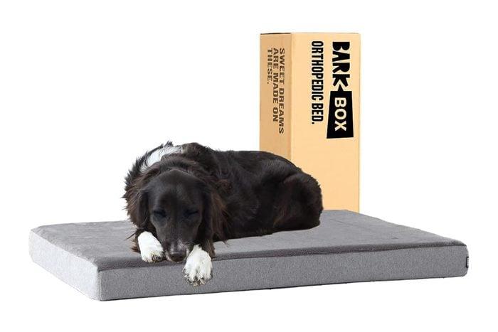 Barkbox Memory Foam Bed
