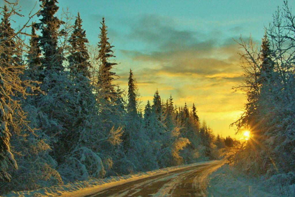 long winter nights alaska