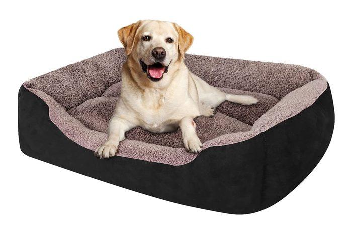 Puppbudd Dog Bed