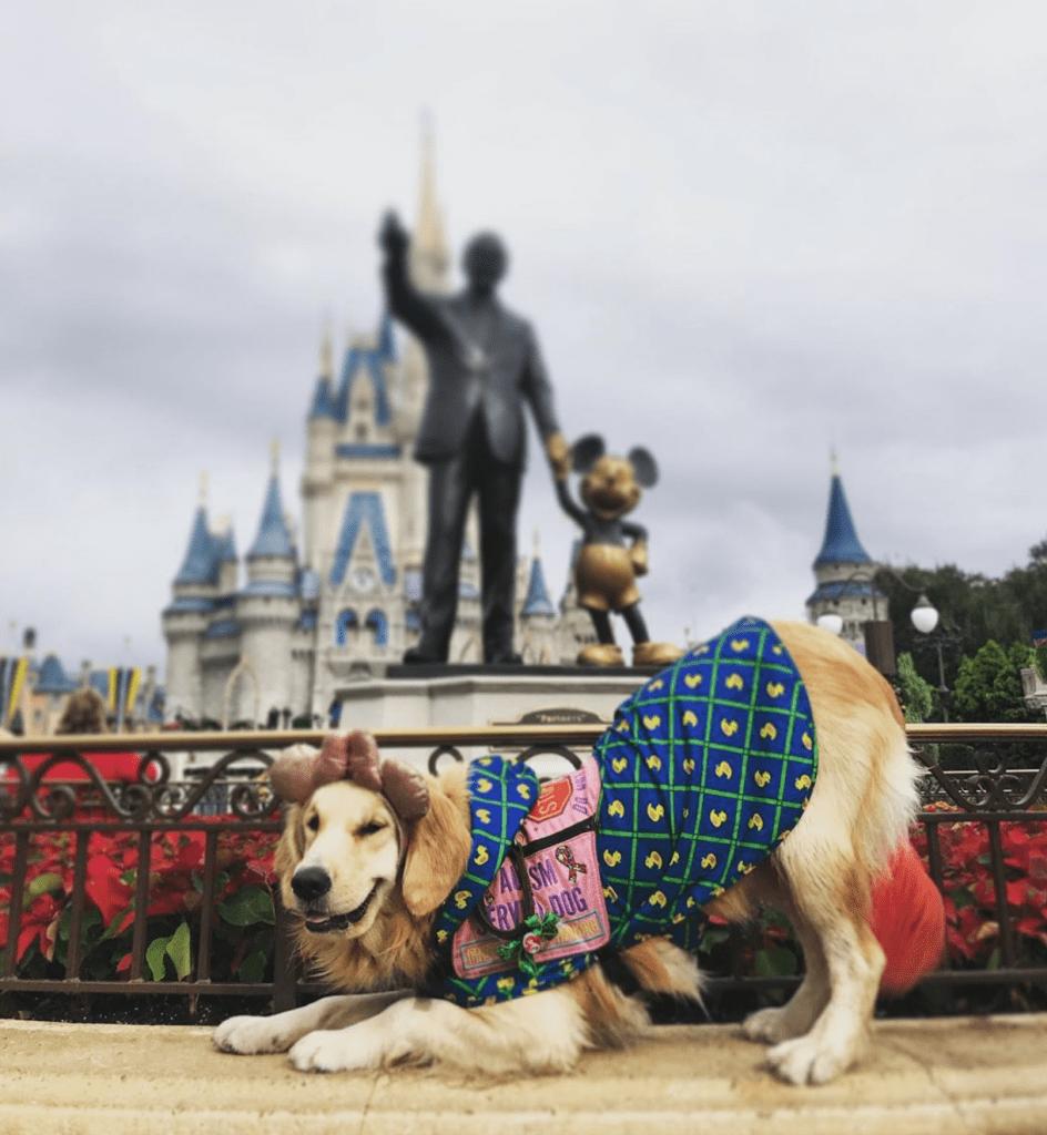 Helper Dog Nala disney adorable animal stories