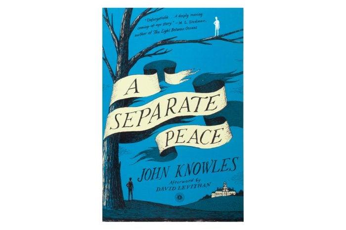 a separate peace book cover