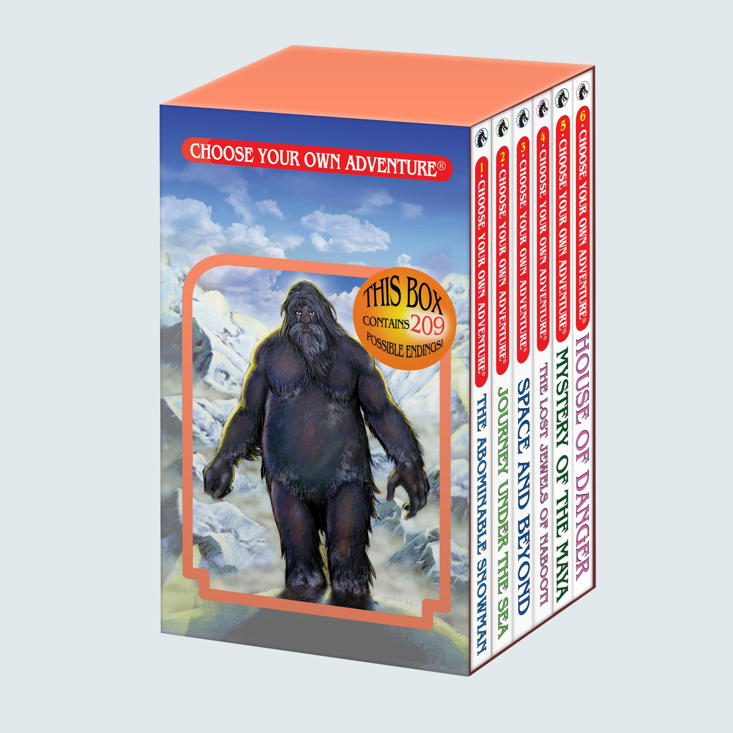 Choose Your Own Adventure Box Set