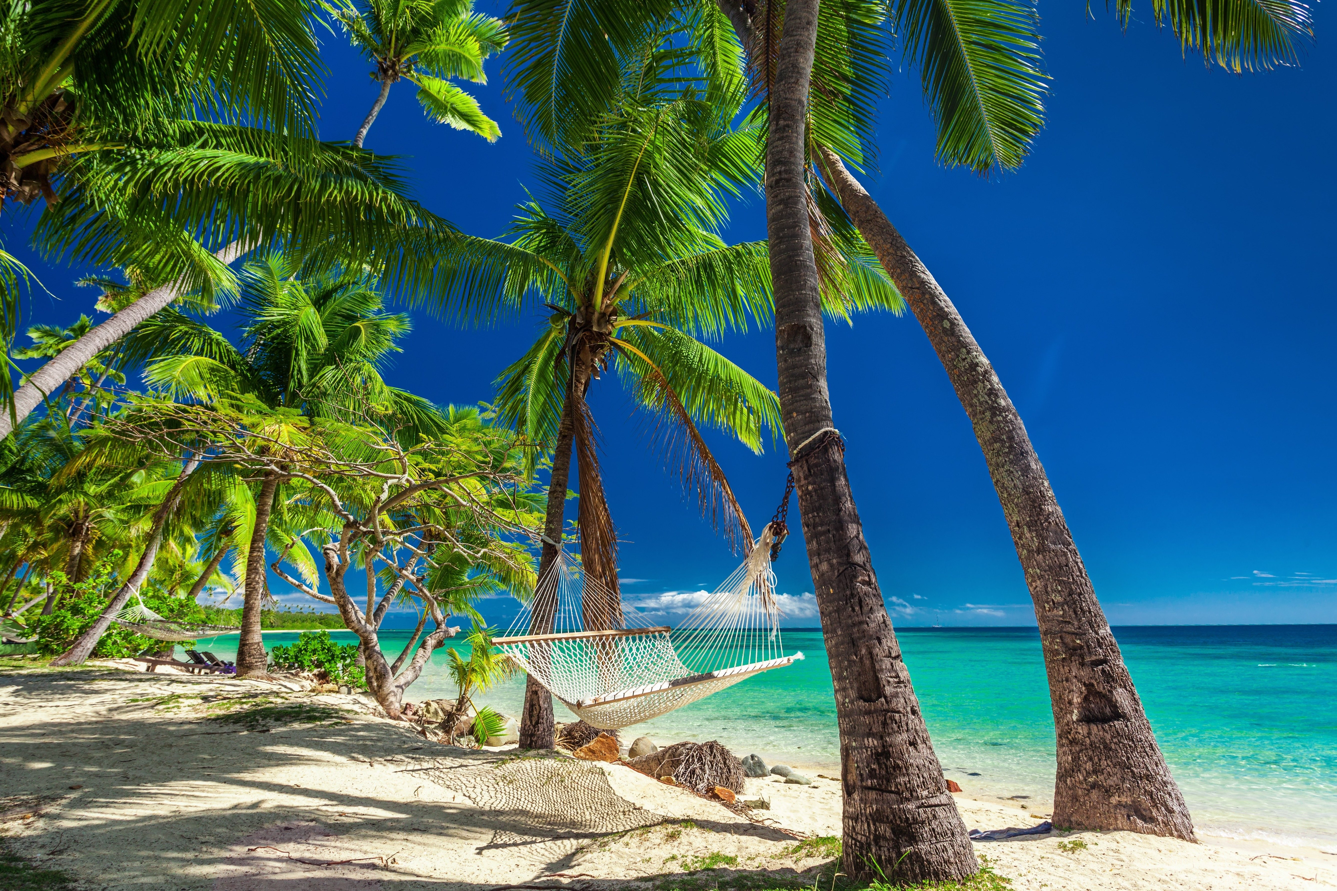 Empty hammock in the shade of palm trees on vibrant tropical Fiji Islands