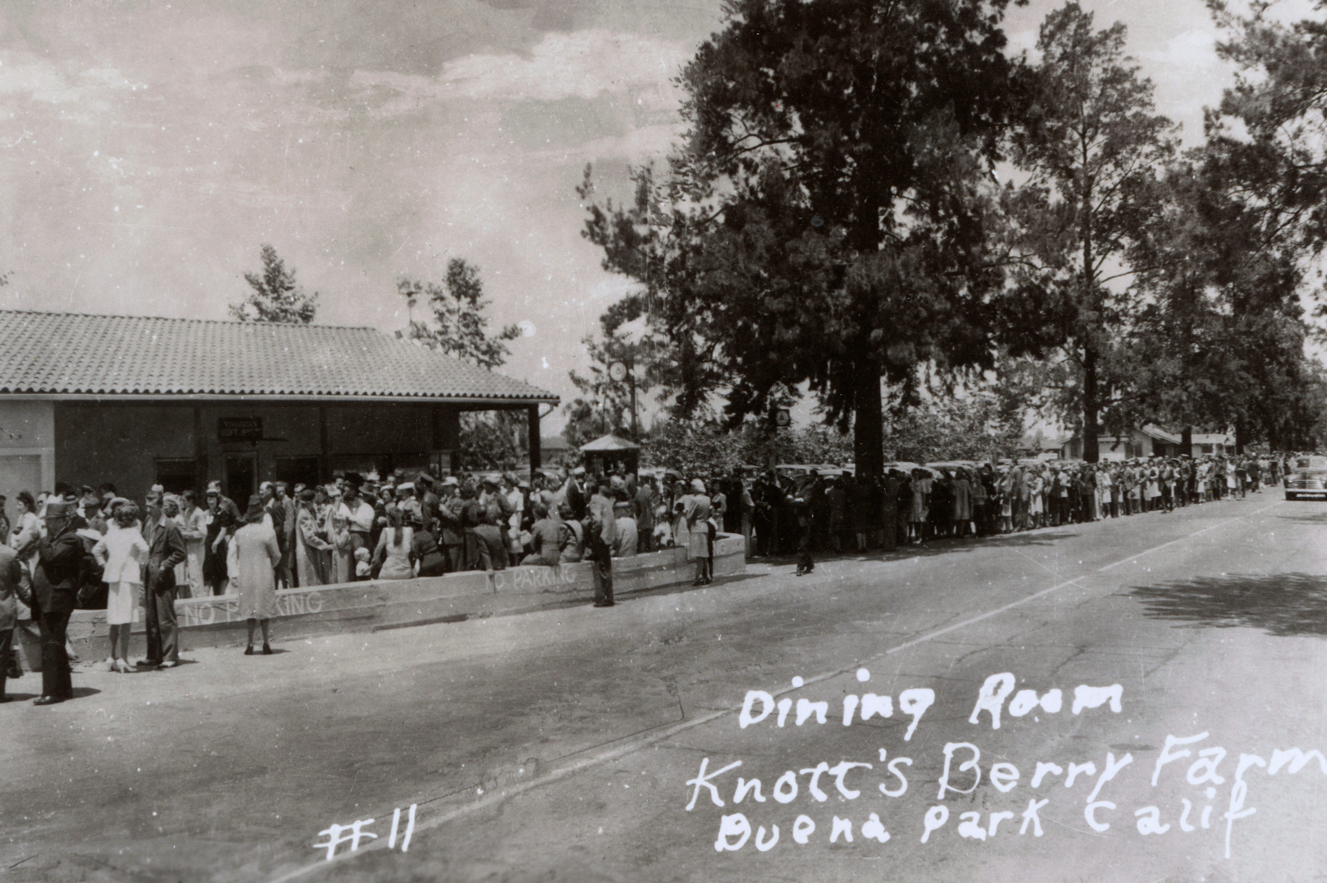 Mandatory Credit: Photo by Historia/Shutterstock (9869682a) Long Queue of People For the Dining Room at Knott's Berry Farm Buena Park Orange County California Usa. . Photograph On A Postcard Knott's Berry Farm, Buena Park, California, Usa