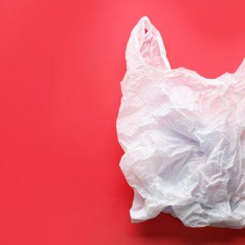 Practical Secrets for Plastic Bags