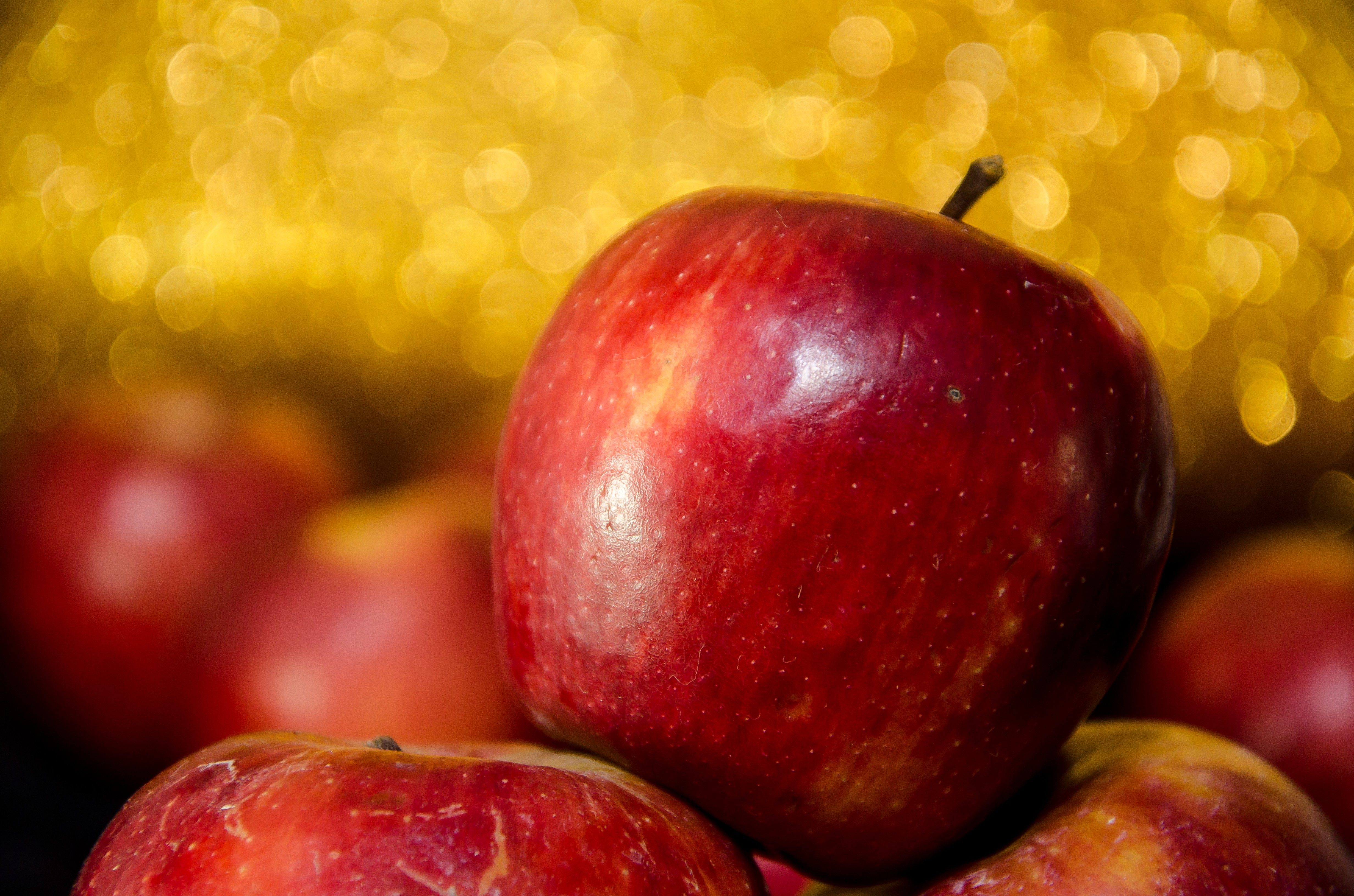 How to Grow Apples and Pears in All Seasons
