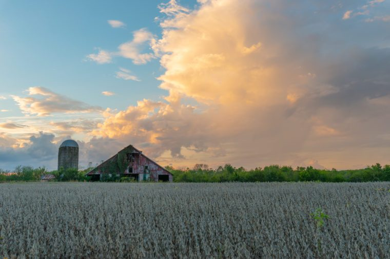 This is an abandoned bard in a soybean field in Tennessee at sunset. The clouds are just starting to catch a little color from the sunset.