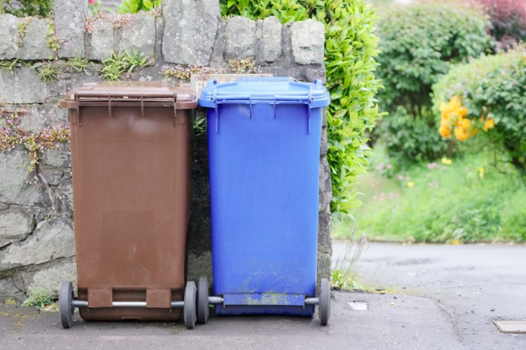 Recycle wheelie bins brown and blue in England