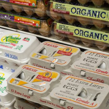 Cage-Free vs. Free-Range: What's the Difference?