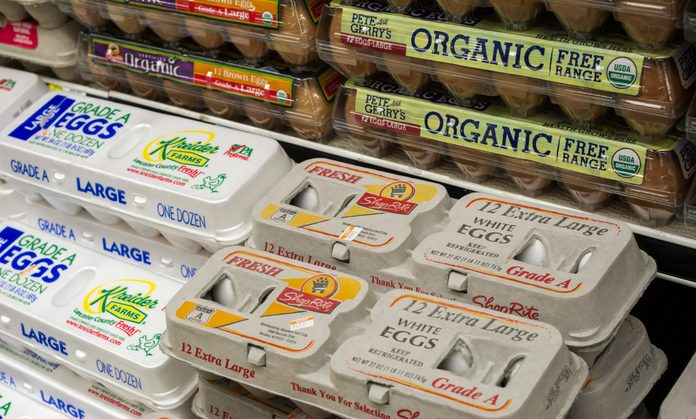 eggs free range vs cage free