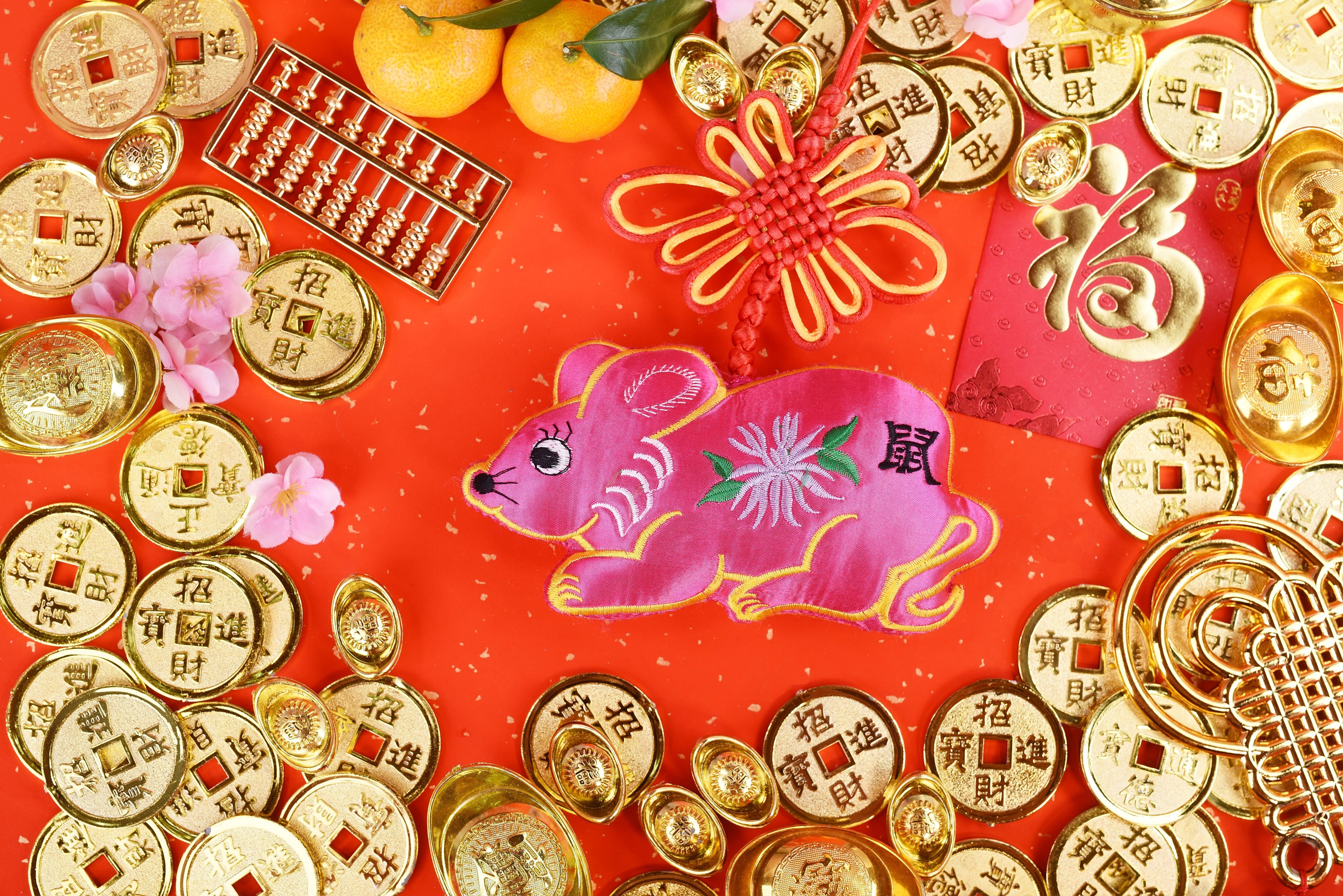 Dog in 2020 chinese zodiac