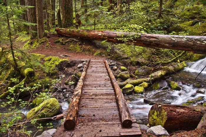 Closeup of wooden foot bridge on hiking trail in mountain over flowing river with mossy rocks./Closeup of Wooden Foot Bridge on hiking trail in mountain