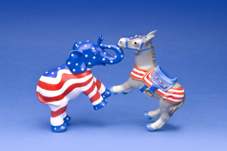 Republican and Democratic party mascots fighting it out on a blue background