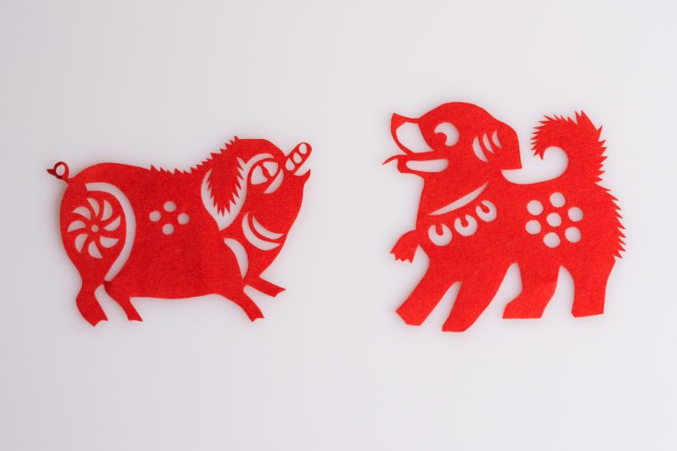 Paper cuts the Chinese zodiac animal ?Boar and Dog?