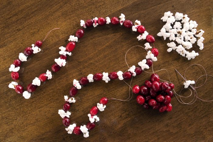 popcorn and cranberry string