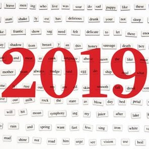 Over 200 different words and word-forms on magnetic tiles with 2019 written over the image